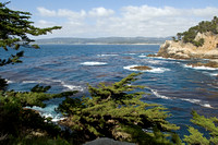 Point Lobos State Reserve 3